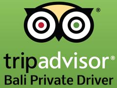 Bali Private Driver - Trip Advisor